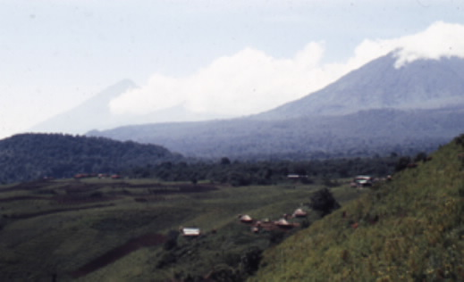 The volcanoes region of the Zaire-Uganda-Rwanda border in 1991, seen in relative peace here, was then just beginning to suffer the destabilizing effects caused by the U.S.-backed invasion of Rwanda by Ugandan troops and the Rwandan Patriotic Army.  Photo keith harmon snow, eastern Zaire, 1991.