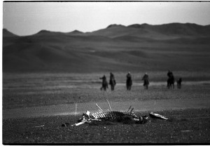 Life for herder on the steppe is hard enough without the toxic pollution and land-grabbing of foreign mining corporations. Photo c. keith harmon snow, 2008.