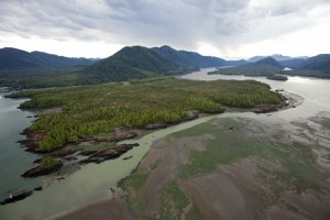 Photo from Skeena River First Nations