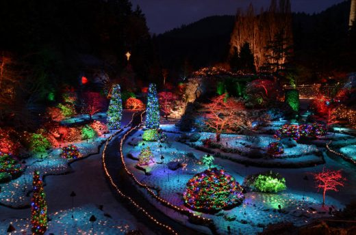 victoria-and-butchart-gardens-christmas-lights